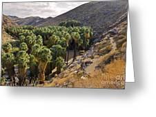 Indian Canyons - California Greeting Card