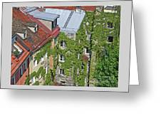 Ivy Courtyard Greeting Card