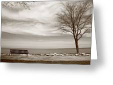 Lake And Park Bench Greeting Card