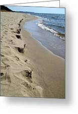 Lake Michigan Shoreline Greeting Card by Michelle Calkins