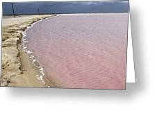Las Coloradas Salt Flat Greeting Card