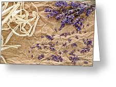 Lavender Flowers And Seeds Greeting Card
