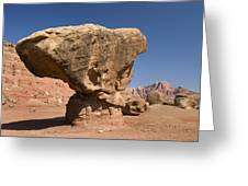 Lees Ferry Rock Formation Arizona Greeting Card