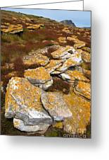 Lichened Rocks Greeting Card