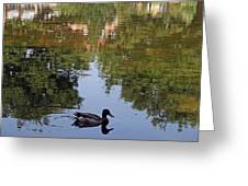 Living In Reflections Greeting Card