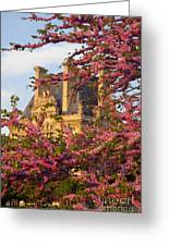 Louvre Blossoms Greeting Card