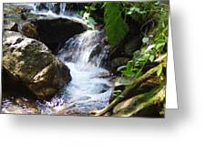 Lower Granite Falls Greeting Card