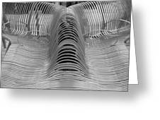 Metal Strips In Black And White Greeting Card