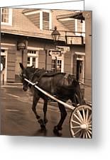 New Orleans - Bourbon Street Horse 3 Greeting Card