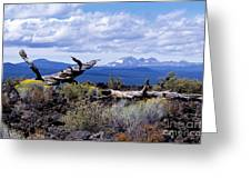 Newberry Lava Beds Greeting Card