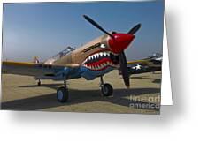 Nose Art On A Curtiss P-40e Warhawk Greeting Card