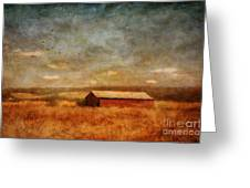 October Afternoon Greeting Card