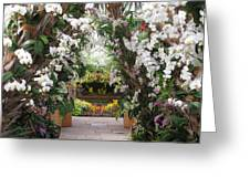 Orchid Display Greeting Card
