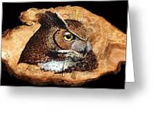 Owl On Oak Slab Greeting Card