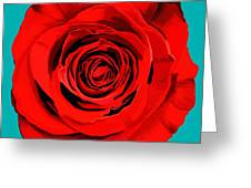 Painting Of Single Rose Greeting Card