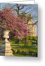 Paris Springtime Greeting Card