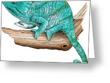 Parsons Chameleon Greeting Card