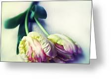 Pastel Petals Greeting Card