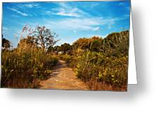 Pathway Through Colorful Fall Autumn Foliage Greeting Card