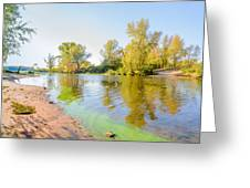 Plants And Trees Close To The River Greeting Card