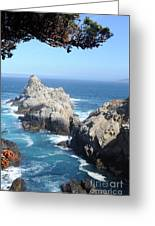 Point Lobos Number Four Greeting Card