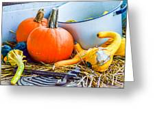 Pumpkins Decorations Greeting Card