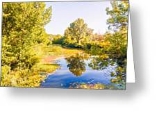 Quiet River In The Park Greeting Card