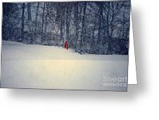 Red Flag On The Snow Covered Golf Course Greeting Card