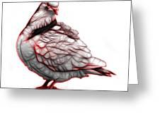 Red Pigeon Pop Art 5516 - Fs - Bb -  Modern Animal Artist James  Greeting Card