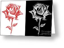 2 Red Rose Drawing Combo Greeting Card