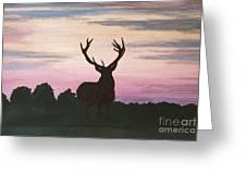 Red Stag At Dusk Greeting Card