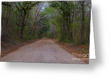 Headed To The Angel Oak Greeting Card