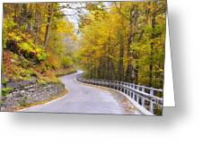 Road With Curves Greeting Card