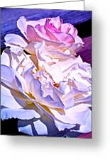 Rose 58 Greeting Card