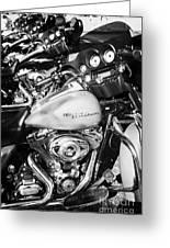 Row Of Harley Davidson Street Glide Motorbikes Outside Motorcycle Dealership Orlando Florida Usa Greeting Card