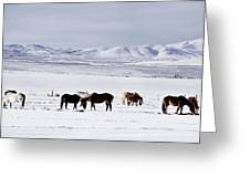 Ruby Mountain Winter Greeting Card