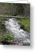 Rushing River Greeting Card by Yvette Pichette