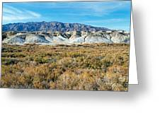 Salt Creek Death Valley National Park Greeting Card