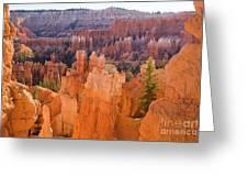 Sandstone Hoodoos Bryce Canyon  Greeting Card