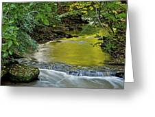 Serene Stream Greeting Card