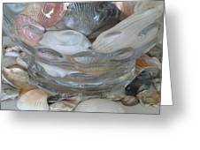 Shells In Bubble Bowl 2 Greeting Card