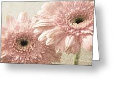2 Silver Pink Painterly Gerber Daisies Greeting Card