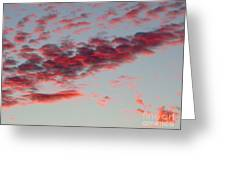 Sky Full Of Fire. Photo Taken In Ft. Myers Florida At Sunset. Greeting Card