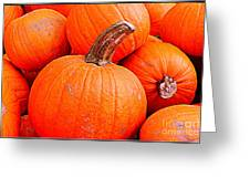 Small Pumpkins Greeting Card