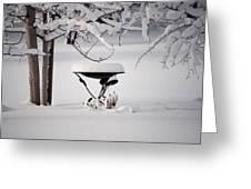 Snowy Bird Bath Greeting Card