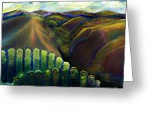 Sonoma Hills Greeting Card