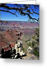 South Rim Of The Grand Canyon Greeting Card