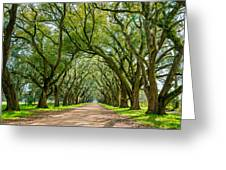 Southern Journey  Greeting Card