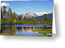 Spring In The Cascades Greeting Card