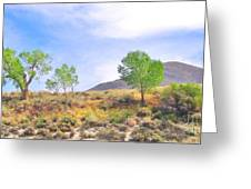 Spring In The Desert Greeting Card
